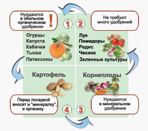 trebovaniya-ovoshhey-k-udobreniyam