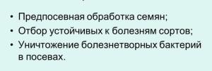 meryi-borbyi-s-boleznetvornyimi-bakteriyami