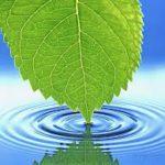 podgotovka-vodyi-dlya-poliva